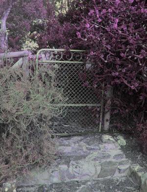 gate to the secret garden