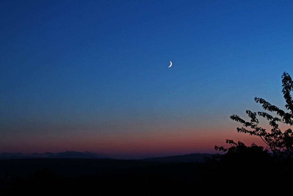crescent moon devon