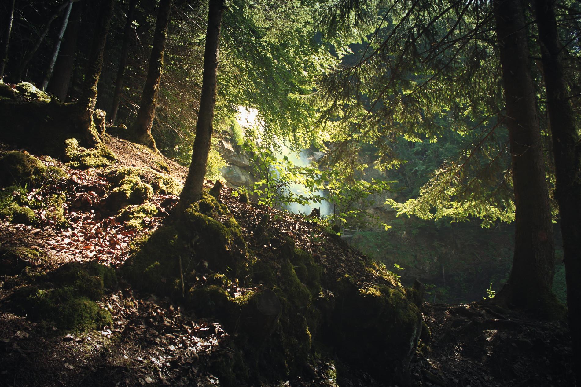 Bernaise Oberland