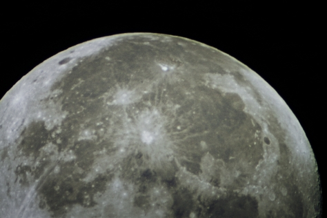 moonytop