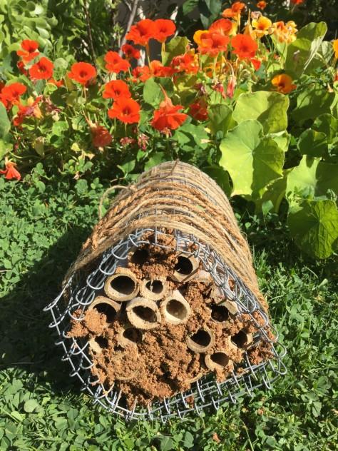 bee-house-2